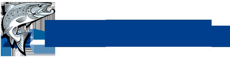 Интернет магазин товаров для рыбалки, охоты и туризма salmo-elite.com.ua
